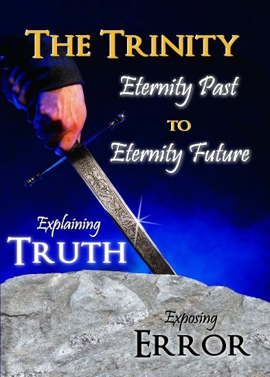The Trinity Eternity Past to Eternity Future DVD